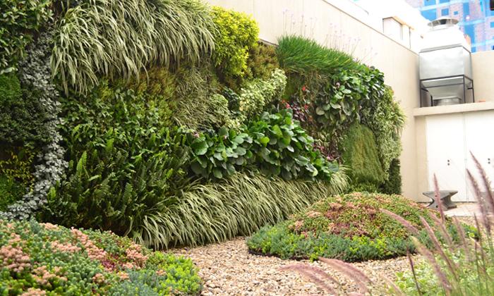 Curso introducci n al dise o y mantenimiento de jardines for Jardines verticales introduccion