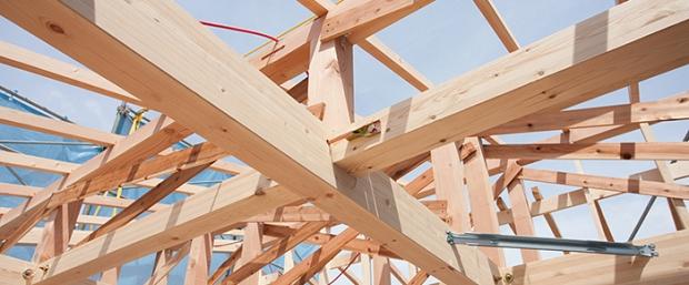 Curso Madera en construcción. Módulo 3: patologías y durabilidad de la madera