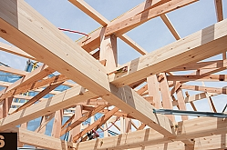 Madera en construcción. Módulo 6: rehabilitación de estructuras de madera