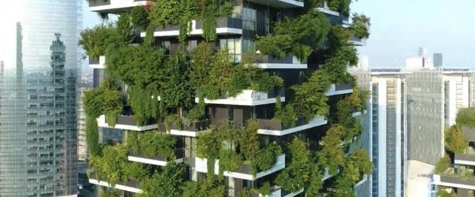 Soluciones propuestas inmediatas para las viviendas