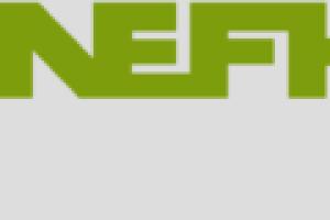 Mapei, patrocinador Diamond del 50º aniversario de ANEFHOP