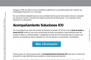 Acompañamiento soluciones ICO