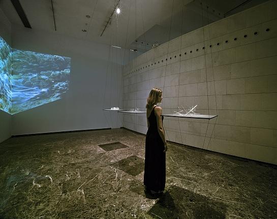 Exposición 'COMPLEJIDAD DINÁMICA' de Oscar Abba . Elche . Alacant . España