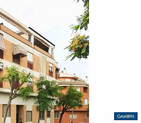 Edificio de 17 viviendas . Alicante . Alacant . España