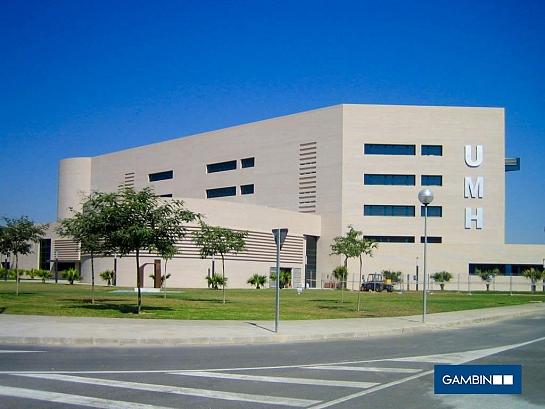 Universidad Miguel Hernández - Salón de Actos . Elche . Alacant . España