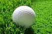 Alber Green (golf)