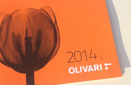 OLIVARI - Catálogo News 2014