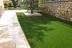 Orión Plus (jardinería)